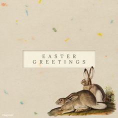 how do html color codes work Easter Bunny Template, Easter Templates, Easter Egg Pattern, Easter Illustration, Rabbit Illustration, Festival Paint, Easter Festival, Happy Easter Day, Coloring Easter Eggs