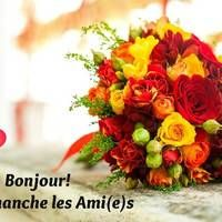 Flowers signify beauty, grace, love and affection. They are the messenger of love. Gift a bouquet of to your loved ones on any occasion or celebration. You can also order and send flowers online. Visit to place your order. Orange Flower Bouquets, Yellow Rose Bouquet, Fall Wedding Bouquets, Yellow Roses, Wedding Flowers, Orange Flowers, Red Roses, Colorful Roses, Spring Bouquet