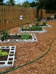 Vegetable Garden Layout with cinder blocks | Home Harvests: Vegetable Garden Design