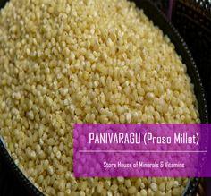 Proso Millet / Barri / Panivaragu