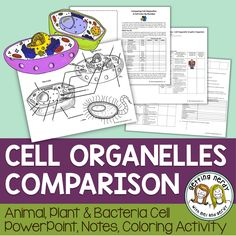 The Interactive Notebook Cell Color-By-Number Activity helps students to connect the commonalities and differences between prokaryotic and eukaryotic cell organelles as they color labeled animal, plant, and bacteria cells. The Interactive Notebook Cell Organelles Notes and Analogy Graphic Organizer is a differentiated tool to help students learn the organelles structure and function of Prokaryotic bacterial cells, and Eukaryotic animal and plant cells.