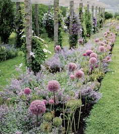 Even the border garden at Bedford home is a sight to behold. Purple nepeta, before it became unwieldy and took over her… Most Beautiful Gardens, Amazing Gardens, Farm Gardens, Outdoor Gardens, Garden Cottage, Garden Beds, Prairie Garden, Garden Pool, Indoor Garden