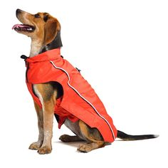 Dog Gone Smart Nanobreaker Rain Coat with Repelz-It Nano-Protection Coat for Dogs -- Visit the image link more details. (This is an affiliate link and I receive a commission for the sales) #Dogs