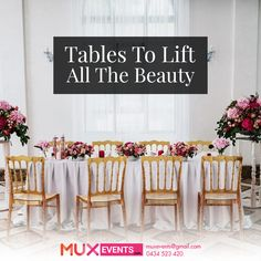 Venue decorations ebay home garden need to hire table for your party or wedding just call us at junglespirit Image collections