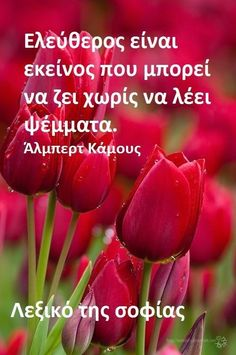 Greek Quotes, Health Tips, Stuffed Peppers, Thoughts, Sayings, Truths, Inspiration, Photography, Art