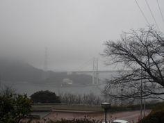 3月4日今日は、下関に来ています。しかし天気は、雨 撮影場所 火の山公園
