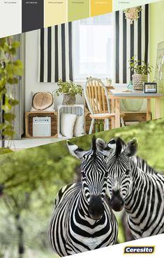 #CeresitaCL #PinturasCeresita #Color #Living #Tendencia #Pintura #Decoración #Energía #Espacios *Códigos de color sólo para uso referencial. Los colores podrían lucir diferentes, según calibrado de su monitor Monitor, Animals, Spaces, Trends, Pintura, Animales, Animaux, Animal, Animais
