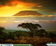 Mount Kilimanjaro, Volcano in Tanzania  |    #africa #srilanka #mountkilimanjaro #tourism #holiday #tours #toursinafrica #tourpackages #holidaypackages #placestovisit #citybreaks #shortbreaks #tourdeals #worldtravel #tourcenter #tourcenteruk #touragentsinuk  |    ☎ Contact us: 0203 515 9024  |    WhatsApp us: 0786 002 6636  |    https://www.tourcenter.uk/destinations/africa/tanzania?utm_source=pinterest&utm_campaign=mount-kilimanjaro-volcano-in-tanzania&utm_medium=social&utm_term=tanzania