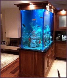 aquarium with cabinet with a