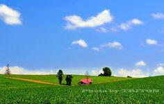 赤い屋根のある丘… 美瑛