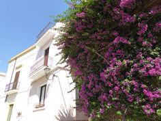 Brindisi Puglia Italia (Luglio)