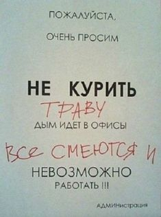 Humor pictures memes so true 55 ideas Super Funny Quotes, Funny Quotes For Teens, Mom Quotes, Hair Quotes, Funny Pictures For Kids, Funny Kids, Funny Photos, Art Pictures, Russian Humor