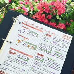 27 . 09 . 2016 // more physics notes! (and even more flowers)