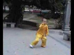 Student of Wang Xian Xinjia Yi Lu