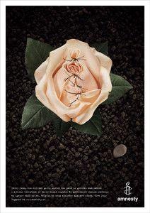 FGM_rose_poster.jpg (212×300)
