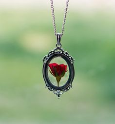 Real Rose Necklace Pressed Flower Silver Necklace Real Rose Romantic Jewelry Love Transparent Filigree Vintage Antique Jewelry by TheHangingGarden on Etsy. I've always loved beauty and the beast. This is beautiful to me.