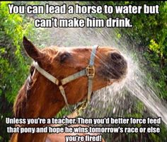 You can lead a horse to water but you can't make him drink, unless you're a teacher. Then you'd better force fed that pony and hope he wins tomorrow's race or else you're fired!