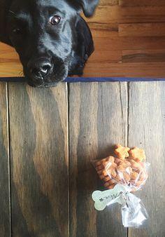chicken sweet potato dog treats recipe | use real butter Diy Dog Treats, Homemade Dog Treats, Dog Treat Recipes, Dog Food Recipes, Sweet Potato Dog Treats, Sweet Potatoes For Dogs, Peanut Butter Dog Treats, Chicken Treats, Dog Cookies