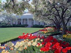 The White House Rose Garden in Spring