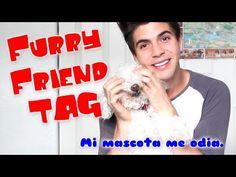 Furry Friend Tag - Mi Mascota me odia. | Johann Vera