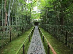 the walkway leading to the entrance of the Daitokuji Temple