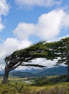 Tierra Del Fuego, Argentina – Natural Beauty in South America