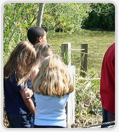 Alley Pond Environmental Center