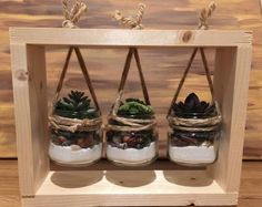 Handmade Succulent Frame – Home Trends 2020 Artificial Succulents, Planting Succulents, Succulent Plants, Suculentas Diy, Succulent Frame, Deco Rose, Diy Hanging Shelves, Diy Holiday Gifts, Creation Deco