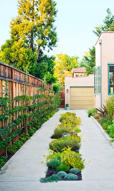 Carve out planting space down the middle of your driveway.