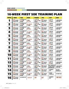 50k Training schedule