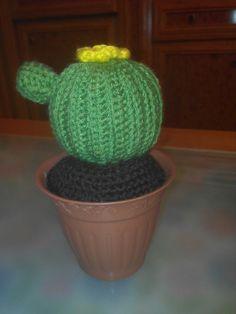 Otro cactus