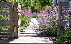 Naše práce   Flera Gate, Sidewalk, Outdoor Structures, Creative, Plants, Instagram, Design, Ferdinand, Gardening