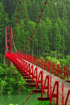 #9: Complementary colors are opposites, the bridge in the photo is red which is a warm color whereas the background of the photo is green (also known as a cool color).