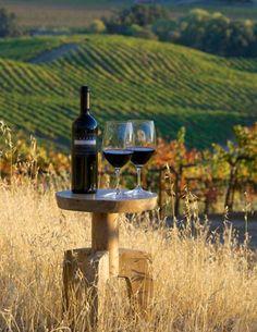 simplicidade. Vinho é isso!