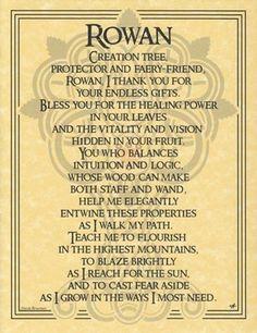 Rowan Tree Book of Shadows