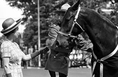 Queen Elizabeth II accepts a gift of one of the Royal Canadian Mounted Police horses during a visit to the Royal Canadian Mounted Police Training Depot. Regina, Saskatchewan. July 4, 1973