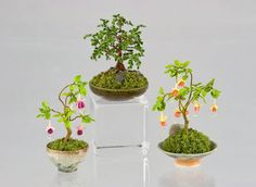 Good Sam Showcase of Miniatures: Flowers, Plants & Vines by Carol Wagner