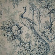 19th century french peacock print