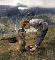 The boy and his remarkable friendship with a colony of alpine animals [X]
