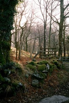 Forest Gate, Dolgellau, Wales