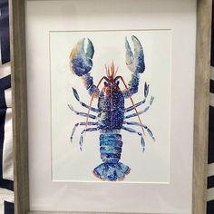 Erika Dugas added a photo of their purchase Watercolor Print, Watercolor Paper, Watercolor Paintings, Lobster Art, Sea Turtle Art, Nautical Art, Fish Print, Coastal Art, Beautiful Artwork