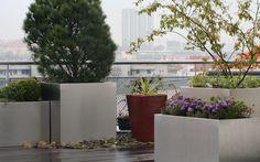 pobytová soukromá střešní zahrada / residential private roof garden Roof Gardens, Terraces, Plants, Decks, Terrace, Plant, Hanging Gardens, Planets, Rooftop Gardens