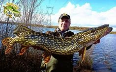 What a Stunning pike!!!!
