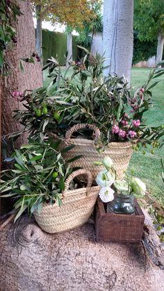 Detalle de bienvenida con olivo que es tendencia. Encuentralo en www.pettyperezmanglano.com