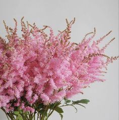 Wholesale Florist Near Me | Bulk Flowers
