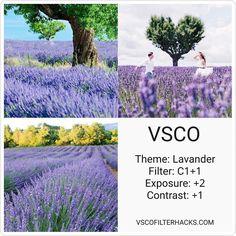 VSCO Filters for Nature - VSCO Filter Hacks
