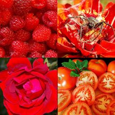 ROT die Farbe des Feuers und der Rubine Fruit, Vegetables, Astrology, Red Color, Colors, Color Of Life, Gemstone, Passion, Adventure
