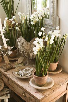 Lovely little spring vignette by deVOL.