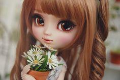 Anna | Flickr - Photo Sharing!