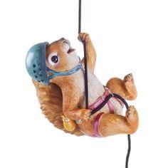 'Sebastian' The Rock Climbing Hanging Squirrel Garden Ornament Animal Garden Ornaments, Rock Climbing, Animal Design, Traditional Design, The Rock, Garden Inspiration, Squirrel, Garden Design, Christmas Ornaments